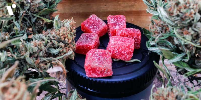 CBD hemp gummies with hemp plant