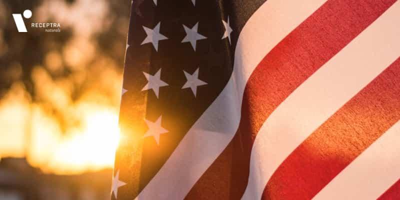 Receptra Veterans day flag